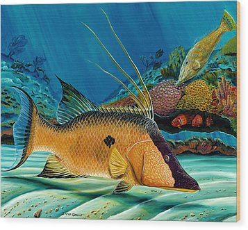 Hog And Filefish Wood Print by Steve Ozment
