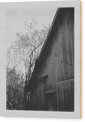 Hog Pen Wood Print by Brady D Hebert