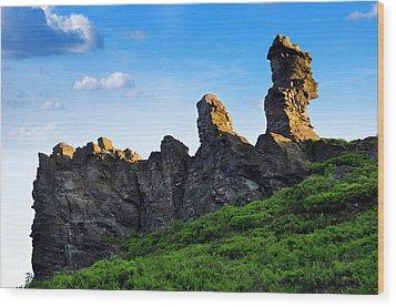 Hoher Stein Kraslice Czech Republic Wood Print by Aged Pixel