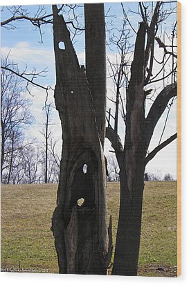 Wood Print featuring the photograph Holey Tree Trunk by Nick Kirby