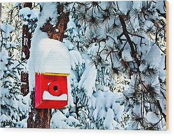 Holiday Birdhouse Wood Print by Teri Virbickis