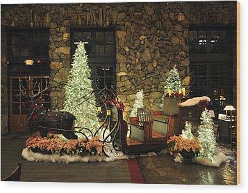 Holiday Sleigh Hsp Wood Print by Jim Brage
