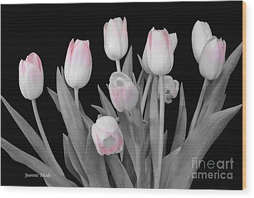 Wood Print featuring the photograph Holland Tulips In Black And White With Pink by Jeannie Rhode