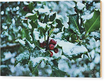 Wood Print featuring the photograph Holly And New Snow by Mindy Bench