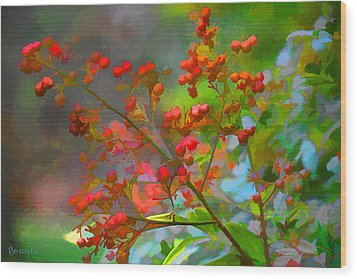 Holly Berry Wood Print by Bonnie Willis