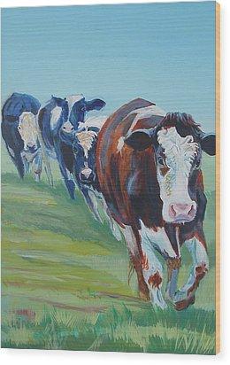 Holstein Friesian Cows Wood Print