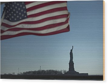 Home Of The Brave Wood Print by Mark Milar