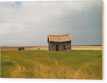 Home On The Range  Wood Print by Jeff Swan