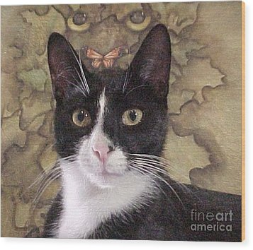 Homeless Kitty To Super Model Wood Print by Robert Stagemyer