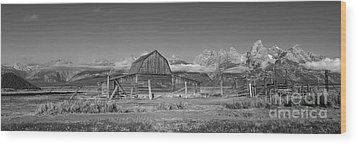 Homestead 101 Wood Print