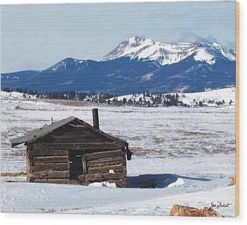 Homestead Neglect Wood Print
