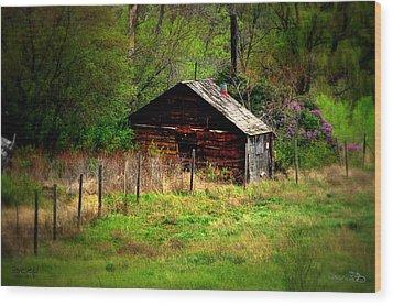 Homestead - Vaseux Lake Wood Print