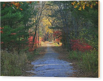 Wood Print featuring the photograph Homeward Bound by Neal Eslinger