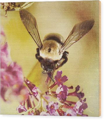 Honey Bee Wood Print by Kim Fearheiley