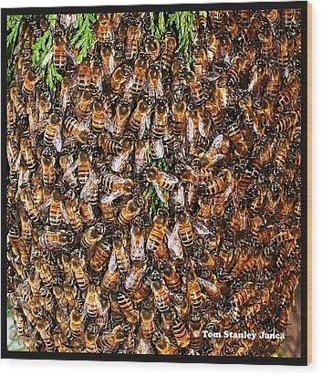 Honey Bee Swarm Wood Print by Tom Janca
