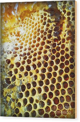 Wood Print featuring the photograph Honey Honey by Kristine Nora