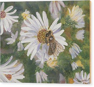 Honeybee On White Aster Wood Print by Lucinda V VanVleck