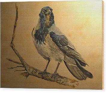 Hooded Crow Wood Print by Juan  Bosco