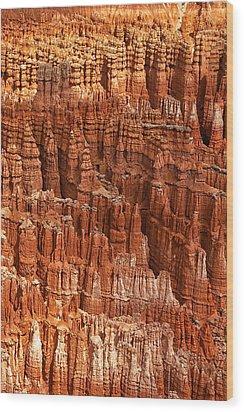 Hoodoos Of Bryce Wood Print by Andrew Soundarajan