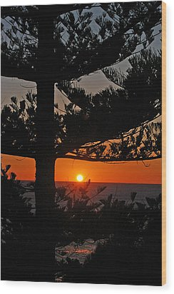 Wood Print featuring the photograph Hope by Ankya Klay