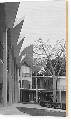 Hope International University Center Wood Print by University Icons