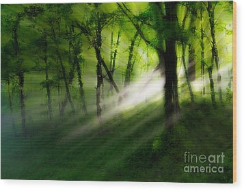 Hope Lights Eternal - A Tranquil Moments Landscape Wood Print by Dan Carmichael