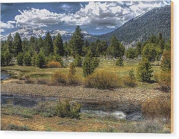 Hope Valley Wildlife Area Wood Print