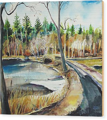 Hopedale January Thaw  Wood Print by Scott Nelson