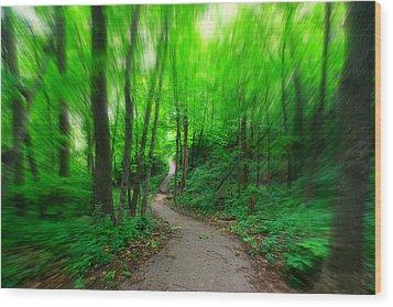 Hopkins Path Wood Print