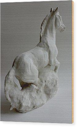 Horse 2 Wood Print by Derrick Higgins