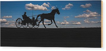 Horse And Buggy Mennonite Wood Print by Henry Kowalski