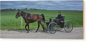 Horse And Buggy On The Farm Wood Print by Henry Kowalski