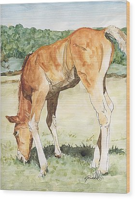 Horse Art Long-legged Colt Painting Equine Watercolor Ink Foal Rural Field Artist K. Joann Russell  Wood Print
