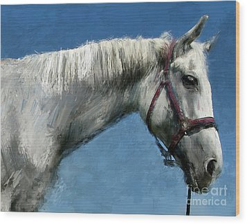 Horse  Wood Print by Daliana Pacuraru