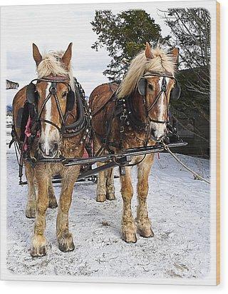 Horse Drawn Sleigh Wood Print by Edward Fielding