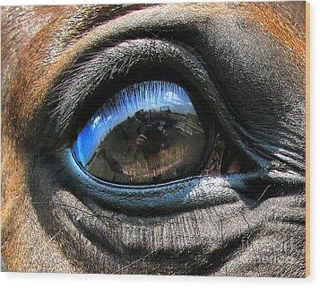 Horse Eye Wood Print by Daliana Pacuraru