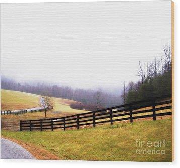 Horse Farm In Rocky Mt Va Wood Print by Angelia Hodges Clay