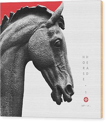 Horse Head 1 Wood Print by David Davies