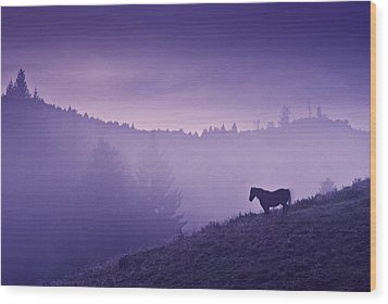 Horse In The Mist Wood Print by Yuri Santin