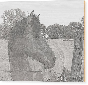 Wood Print featuring the photograph Horse by Irina Hays