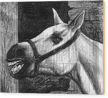 Horse Wood Print by Mark Zelmer