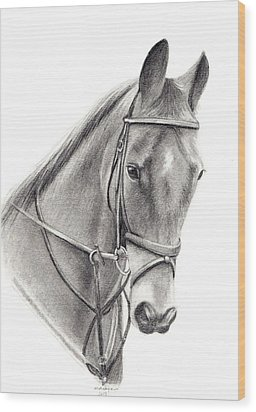 Horse Wood Print by Mary Mayes