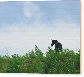 Wood Print featuring the photograph Horse On The Hill by Joan Davis