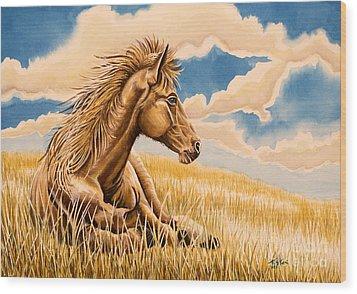 Horse Resting Wood Print by Tish Wynne