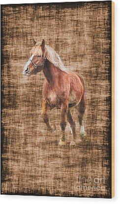 Horse Running Wood Print by Dan Friend