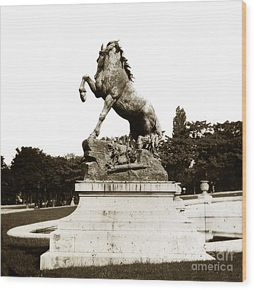 Wood Print featuring the photograph Horse Sculpture Trocadero  Paris France 1900 Historical Photos by California Views Mr Pat Hathaway Archives