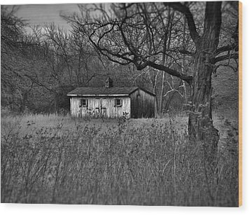 Horse Shed Wood Print by Robert Geary
