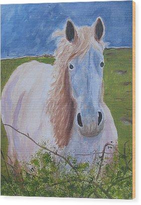 Horse With Stormy Skies Wood Print by Dawn Dreibus