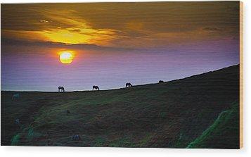 Horsed On The Purple Hillside Wood Print by William Shevchuk