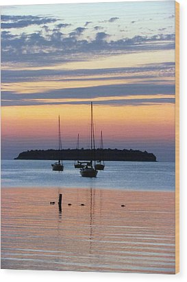 Horsehoe Island Sunset Wood Print by David T Wilkinson